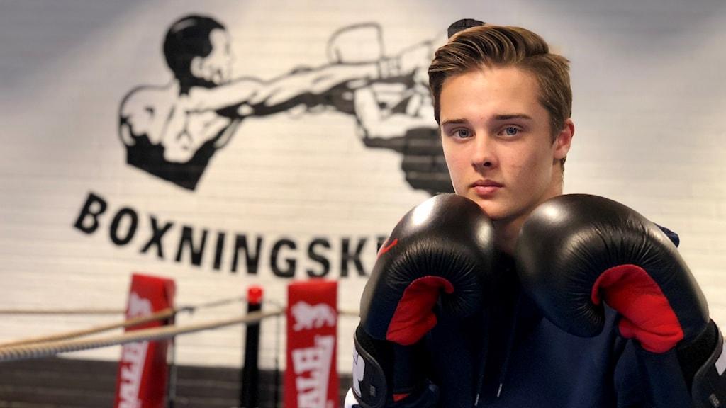 Ung boxare som poserar i ringen