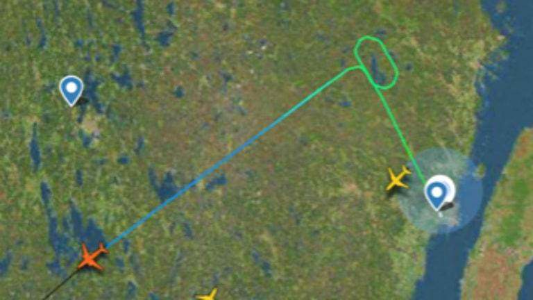 Birdstrike. Charterplan gör 360sväng efter krock med fågel.