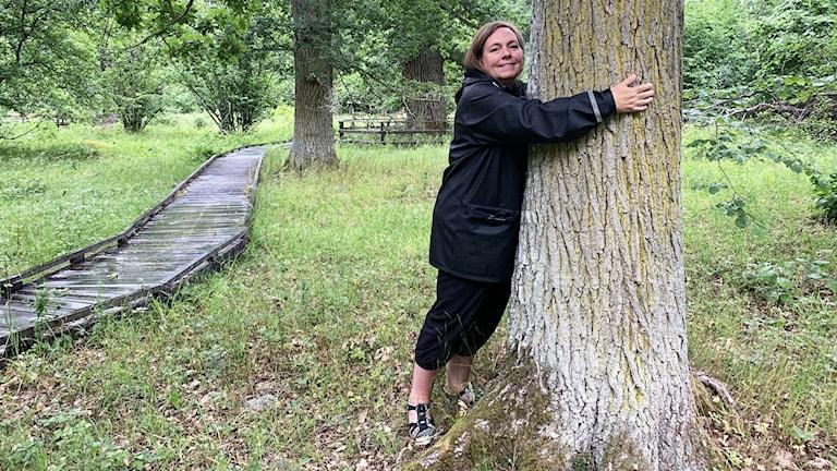 En person kramar ett träd i skogen.