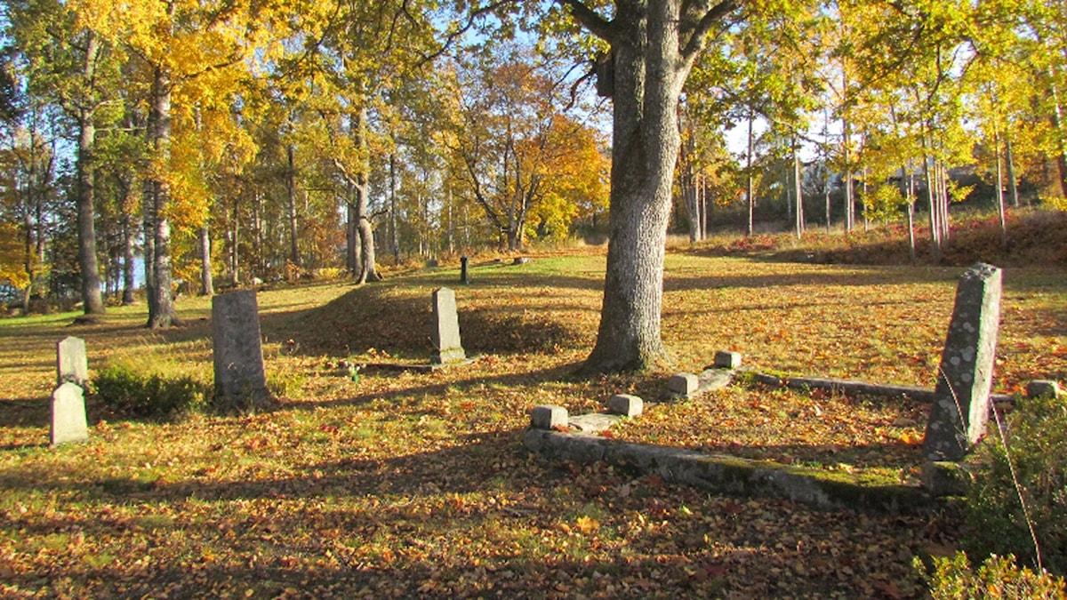 På fotot syns några gravar på en kyrkogård. Det finns inga blommor vid gravarna, men i övrigt ser det ut som en välskött park.