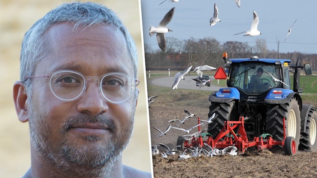 David Borg från Malmö. Till höger en traktor som plöjer jorden.