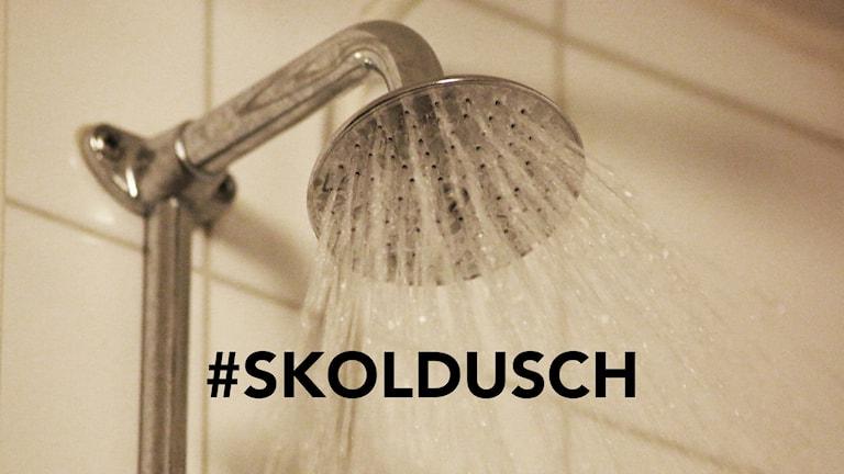 #skoldusch