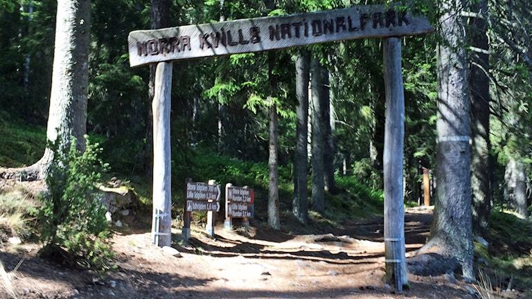 Norra Kvills nationalpark.