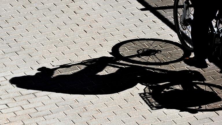Skuggan av en cyklande person