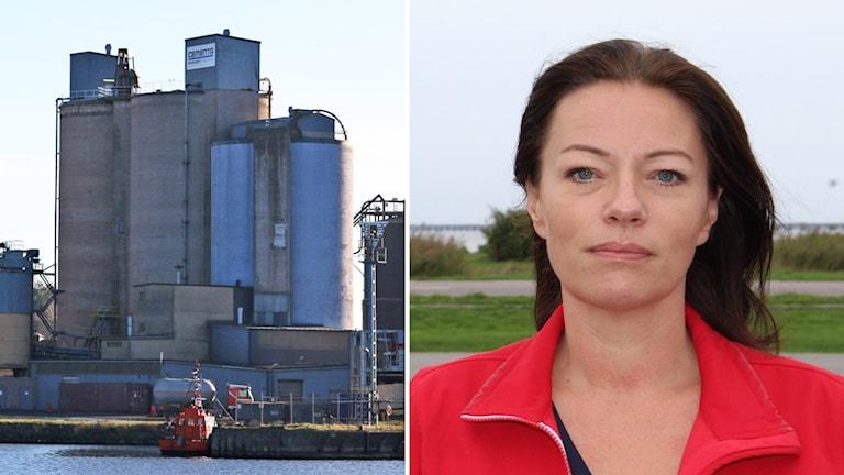 Ett kollage med en fabrik och en politiker.