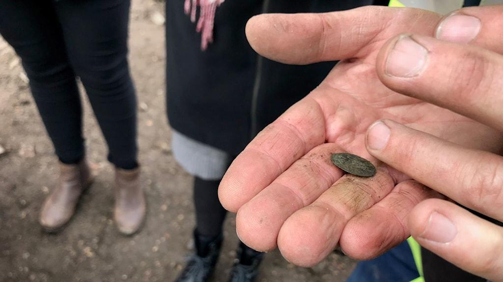Mynt från troligen 1400-talet hittat vid utgrävningarna i år av Kalmar slott