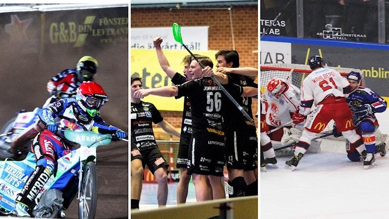 Speedwayförare, innebandyspelare och ishockeyspelare.