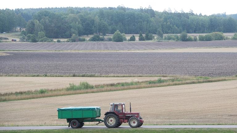 En traktor på en mindre väg omgiven av åkermark i mälardalen.