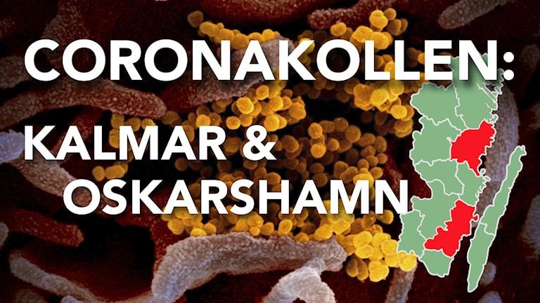 """I bakgrunden syns närbild på en virus. Framför den står det """"Coronakollen"""" med en karta över Kalmar län."""