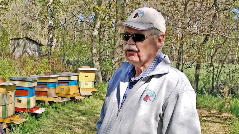 Hans Lundell, biodlare Lindby Öland, framför sina bikupor
