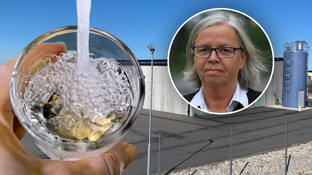 Bildsplit på vattenglas, vattenverk och kvinna som tittar mot kameran.