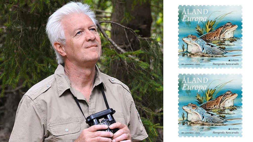 Montage med en man som är ute i naturen och ett frimärke med två grodor på.