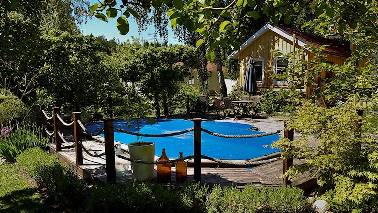 Pool och villa i trädgård.