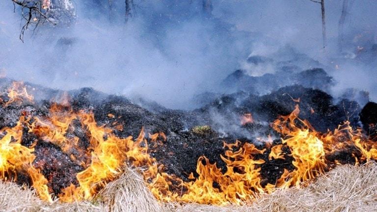 Det brinner på ett hygge utanför Fliseryd under söndagen.