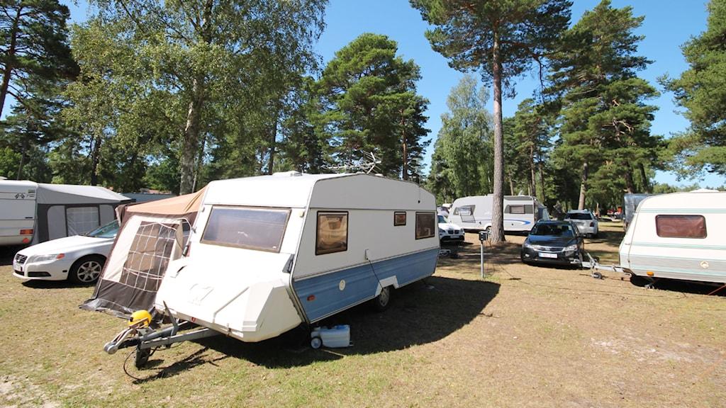 Camping. Foto: Nick Näslund/Sveriges Radio