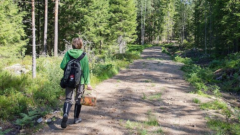Kvinna i skogen.
