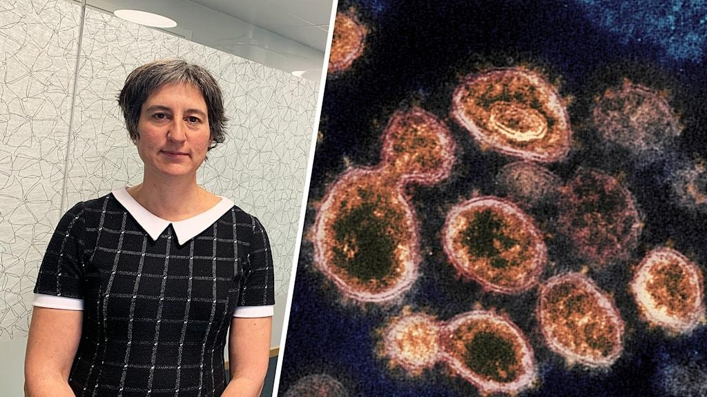 Bild på kvinna samt en bild på viruspartiklar sedda genom mikroskop.