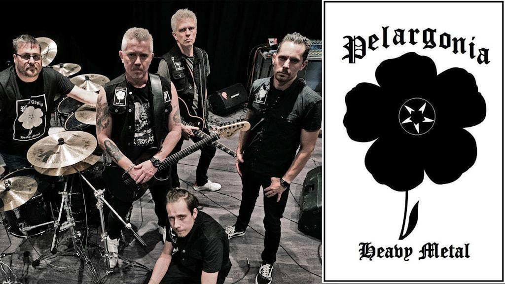 Bandet Pelargonia, Sörmland topp 5.
