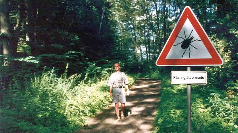 En skuggig skog med en varningsskylt för fästingar. Foto: Baxter/Scanpix.