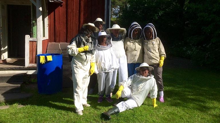 Med skyddskläder på är det dags att se till bina i kupan. Foto: Johanna Jennische/Sveriges Radio