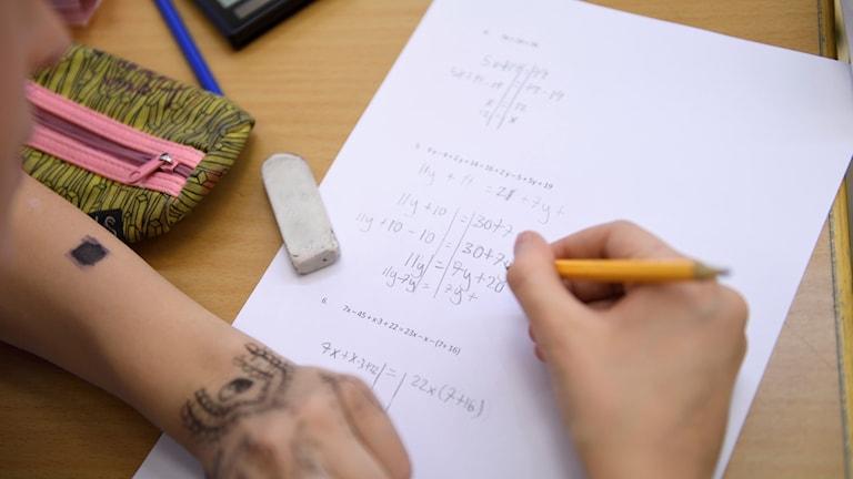 Elev räkna matematik. Foto: Henrik Montgomery/TT.