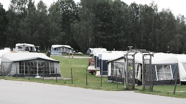 Camping. Foto: Sara Choghrich /Sveriges Radio