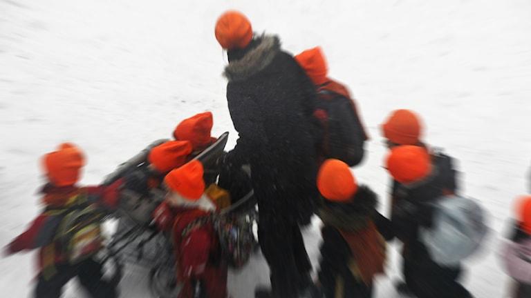 Barn i orange toppluvor går med en vuxen genom snön. Foto: Hasse Holmberg/Scanpix.