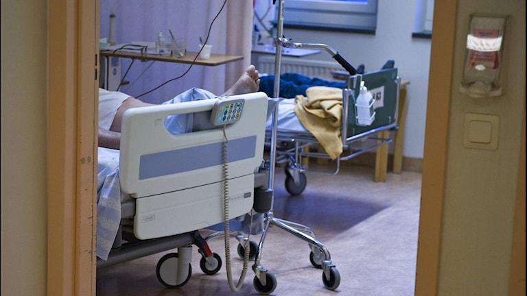 Sjukhussal med sängar. Foto: Bertil Ericson/TT