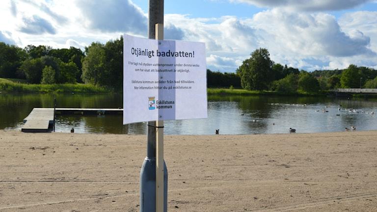 """En skylt med texten """"Otjänligt badvatten!"""", i bakgrunden en strand, en brygga och några änder. Foto: Petra Levinson/Sveriges Radio."""