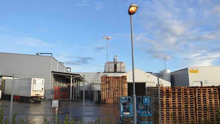 Industribyggnad, lastbil, lastpallar och truckar. Foto: Petra Levinson/Sveriges Radio.