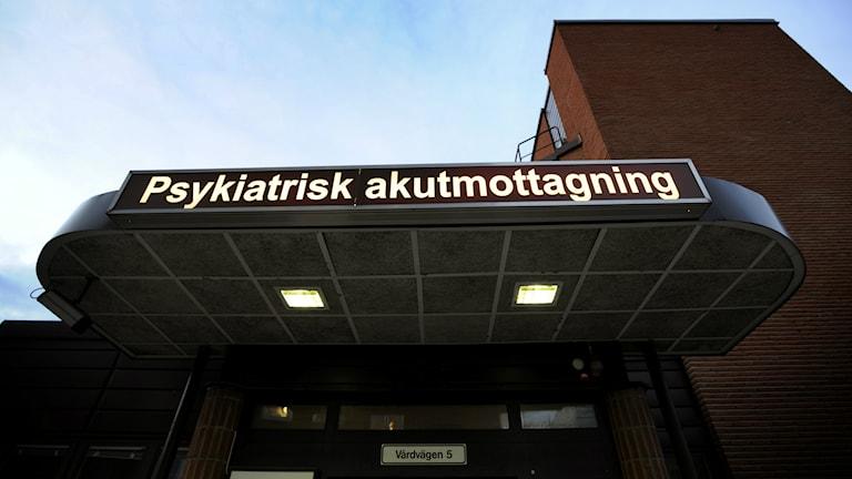 Foto: Tomas Oneborg/TT.