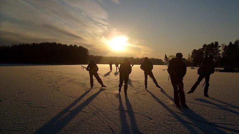 Långfärdsskridskoåkare på is