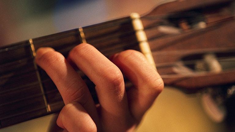 gitarr. Foto: Fredrik Persson/TT