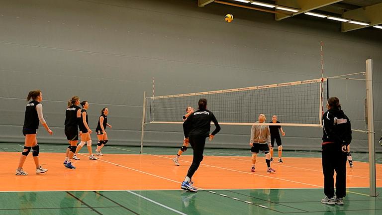 Katrineholms volleybolldamer i träning. Foto: Per Thyrén/Sveriges Radio.