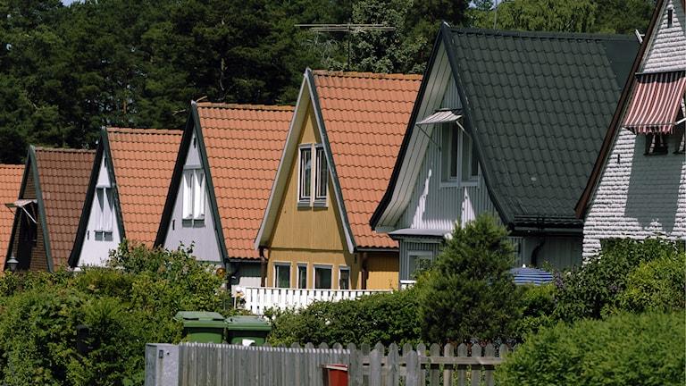 Radhus i olika färger, omgivna av grönska. Foto: Hasse Holmberg/TT.