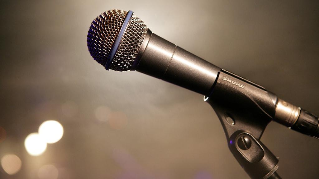 Mikrofon. Foto: Fredrik Sandberg/TT.
