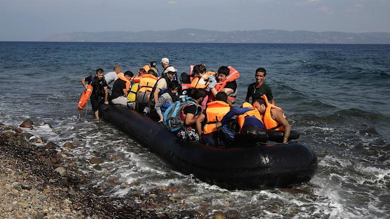 Båtflyktingar. Foto: Petros Giannakouris/TT.