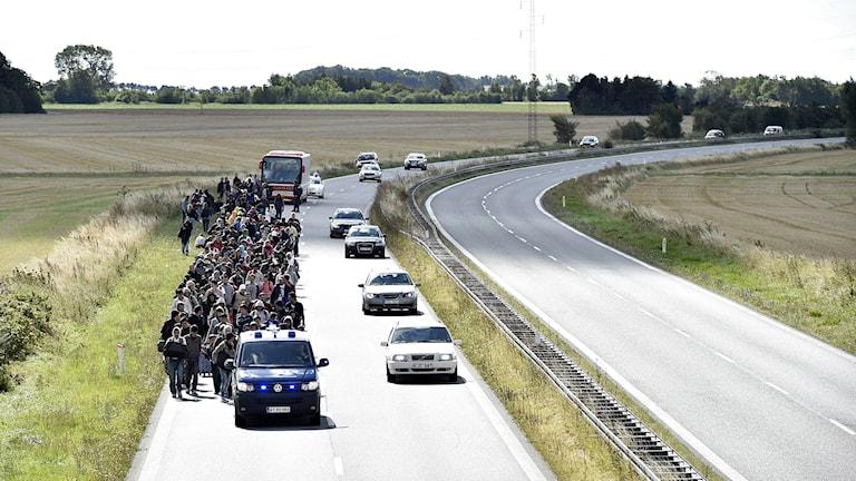 Flyktingar får längs väg i Danmark. Foto: Bax Lindhardt/TT