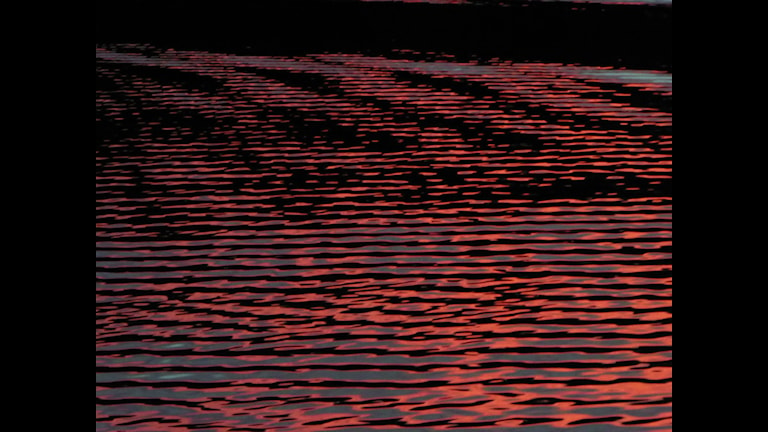 Sjön glittrar rött. Foto: Nisse Levin