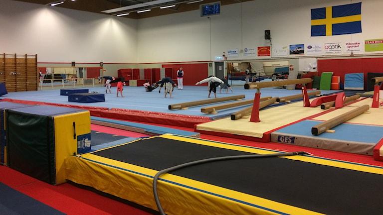 Gymnaster övar. Foto: Fredrik Lorenzoni/Sveriges Radio.
