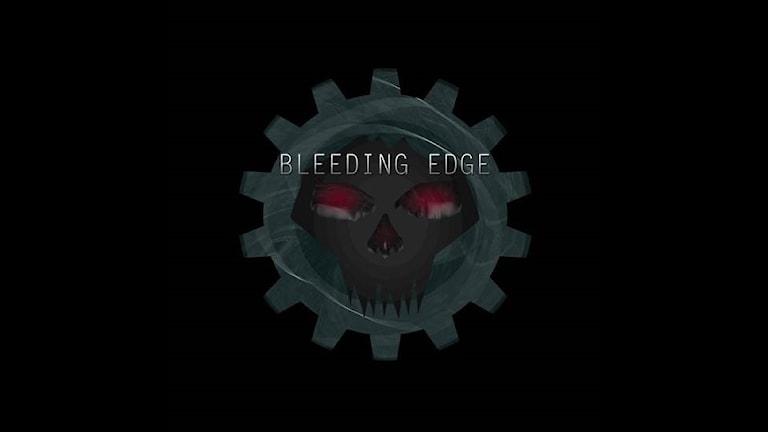 Bleeding Edge. Foto: Privat