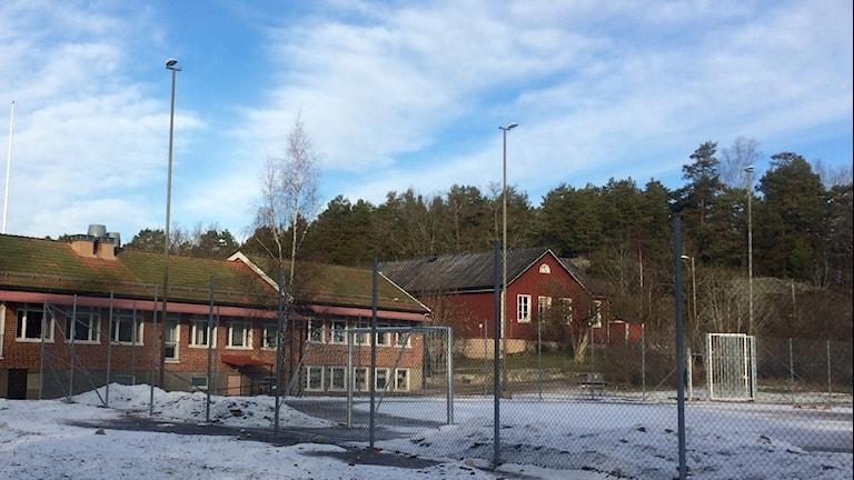 Tosteröskolan och Prästkragen 16. Foto: Annizeth Åberg/Sveriges Radio.