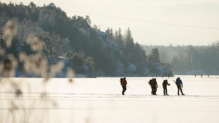 Skridskoåkare på sjön Drevviken mellan Stockholm, Tyresö och Huddinge.