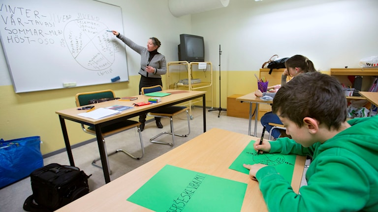 Modersmålsundervisning i romani i Malmö.  Drago Prvulovic/TT.