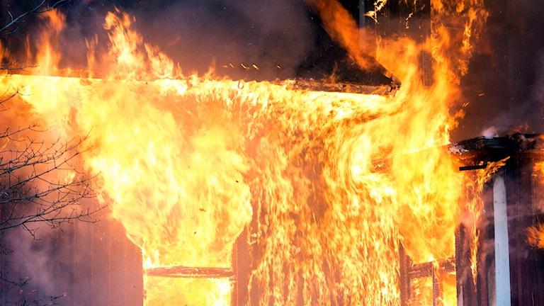 Lågor i en fullt utvecklad brand i ett hus.