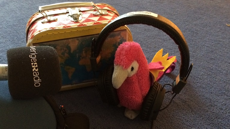 Papegojan Maracas provar radio.
