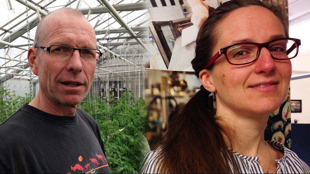Mats Sjöstedt driver ekologisk gård utanför Strängnäs, Karin Lundell är måltidschef i samma kommun.