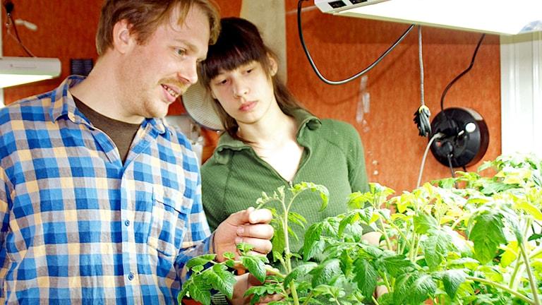 Allan och Jenny Wilhelmsson