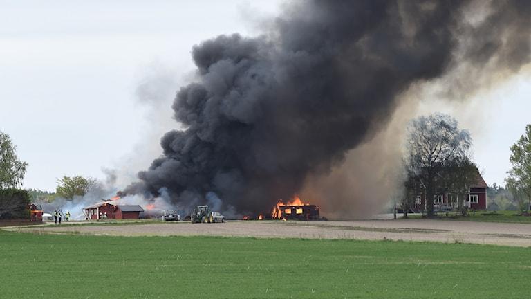 Svart rök stiger upp i samband med en brand i en ladugård i Hillesta i Västerljung utanför Trosa. Foto: Pontus Stenberg.