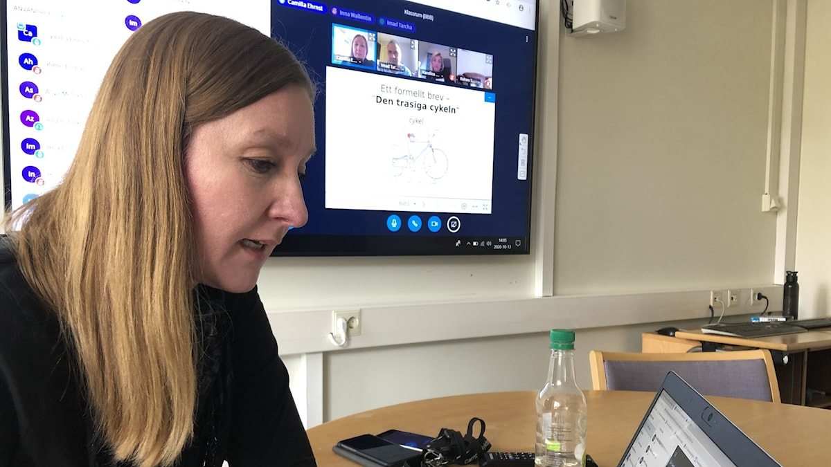 Camilla Ehrnst vid datorn